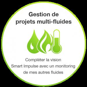 Gestion projets multi-fluides