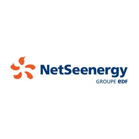 Logo NetSeenergy - Groupe EDF
